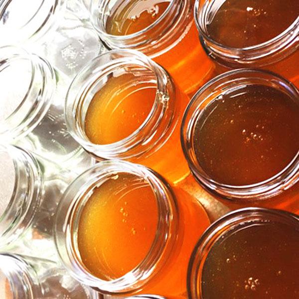 Frombee Honig online kaufen Honigsorten